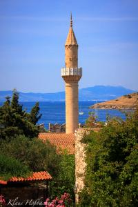 Mosche-Burg